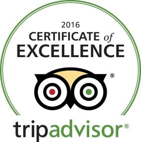 trip 2016 award